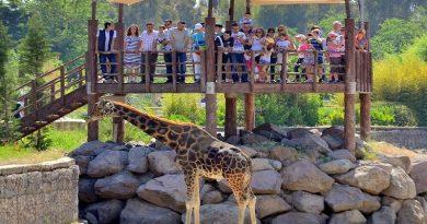 İzmir Sasalı Doğal Yaşam Parkı Nerede