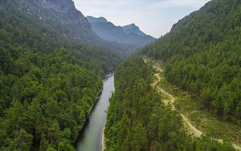 Sığla Ormanı Tabiat Parkı Burdur